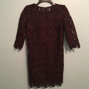 Lace Maroon Mini Dress